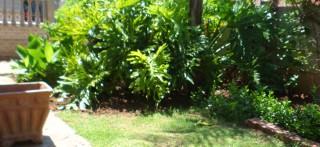mafikeng garden service