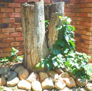 mafikeng landscaping